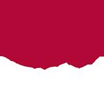 City Opera Logo